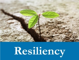 Resilience Web Icon
