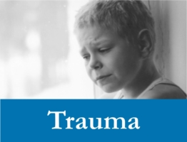 Trauma Web Icon